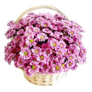 Basket of flowers from 11 branches of a chamomile spray chrysanthemum - flowers and bouquets on salonroz.com