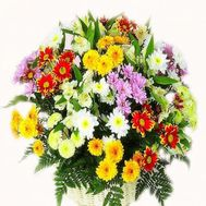 Basket of flowers from 14 chrysanthemums and 5 alstromerias - flowers and bouquets on salonroz.com