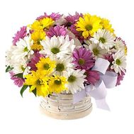 Basket of flowers from 13 different colored chrysanthemums - flowers and bouquets on salonroz.com