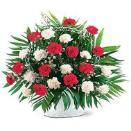 Basket of flowers from 23 white and red carnations - flowers and bouquets on salonroz.com