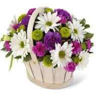 Basket of flowers from 9 carnations and 10 chrysanthemums - flowers and bouquets on salonroz.com