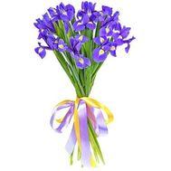 Букет из 17 ирисов - цветы и букеты на salonroz.com