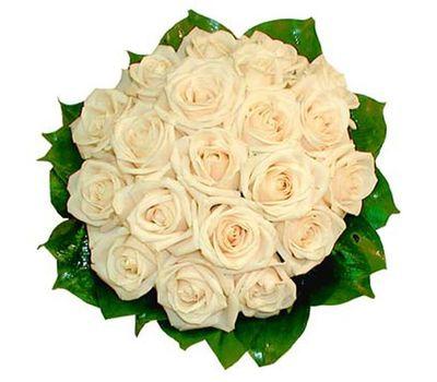 """""""Букет из 19 кремовых роз"""" в интернет-магазине цветов salonroz.com"""