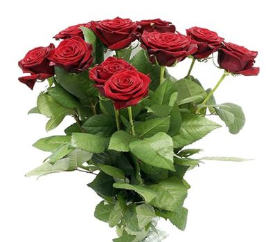"""""""Букет из 15 красных роз"""" в интернет-магазине цветов salonroz.com"""