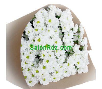 """""""Букет из 13 белых  кустовых хризантем"""" в интернет-магазине цветов salonroz.com"""