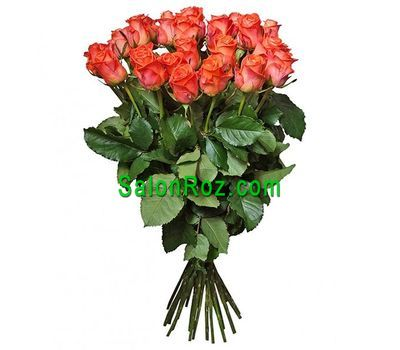"""Bouquet of 25 orange roses"" in the online flower shop salonroz.com"