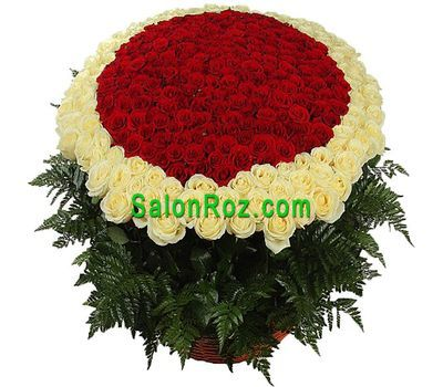 """Bouquet of 501 red and white roses"" in the online flower shop salonroz.com"