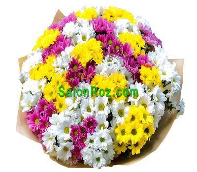 """""""41 разноцветная хризантема"""" в интернет-магазине цветов salonroz.com"""