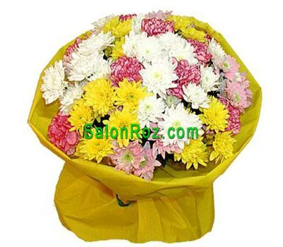 """Bouquet of 9 chrysanthemums and 8 carnations"" in the online flower shop salonroz.com"
