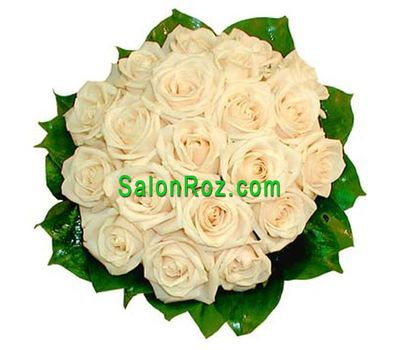 """Bouquet of 19 Cream Roses"" in the online flower shop salonroz.com"