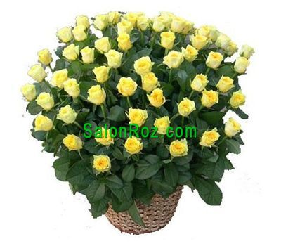 """Basket of 71 yellow roses"" in the online flower shop salonroz.com"