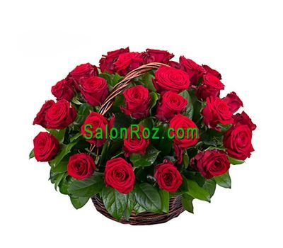 """Goat of 35 red roses"" in the online flower shop salonroz.com"