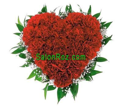 """Heart of 25 red carnations with gypsophila"" in the online flower shop salonroz.com"
