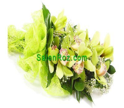 """""""Букет из 1 орхидеи"""" в интернет-магазине цветов salonroz.com"""