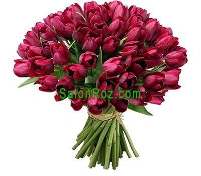 """""""Букет из 75 красных тюльпанов"""" в интернет-магазине цветов salonroz.com"""