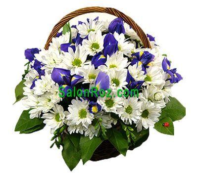 """""""Корзина цветов из 13 хризантем и 6 ирисов"""" в интернет-магазине цветов salonroz.com"""